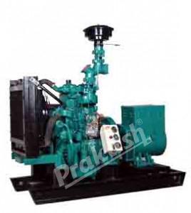 Biomass Genset 15 to 40 KVA