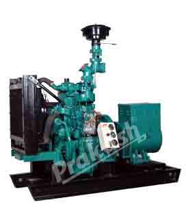 Biomass Engine