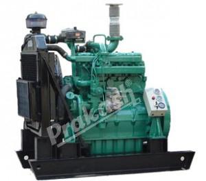 Biogas Engine